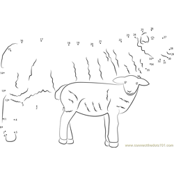 Sheep with her Baby Dot to Dot Worksheet