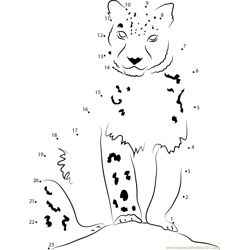 Snow Leopard Looking at Me Dot to Dot Worksheet