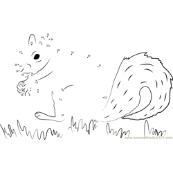 Squirrel Find His Food Dot to Dot Worksheet