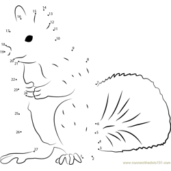 Squirrel Man Dot to Dot Worksheet