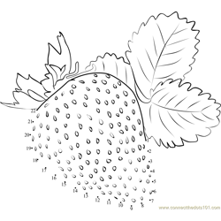 Strawberry with leaf Dot to Dot Worksheet