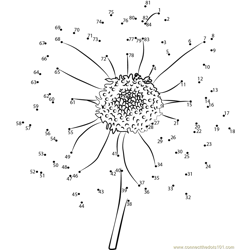 Sun flower Dot to Dot Worksheet