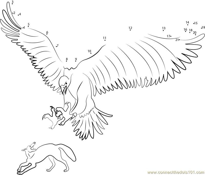 Thunderbird Attacking on Jackal dot to dot printable ... - photo#11