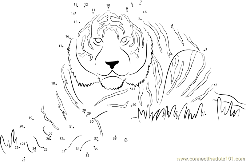 Eye Of The Tiger Dot To Dot Printable Worksheet Connect