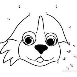 Pet Parade Bernese Puppy Face Dot to Dot Worksheet