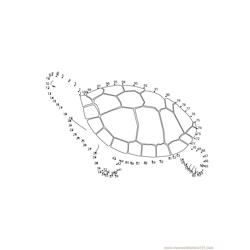 Swimming Turtle Dot to Dot Worksheet