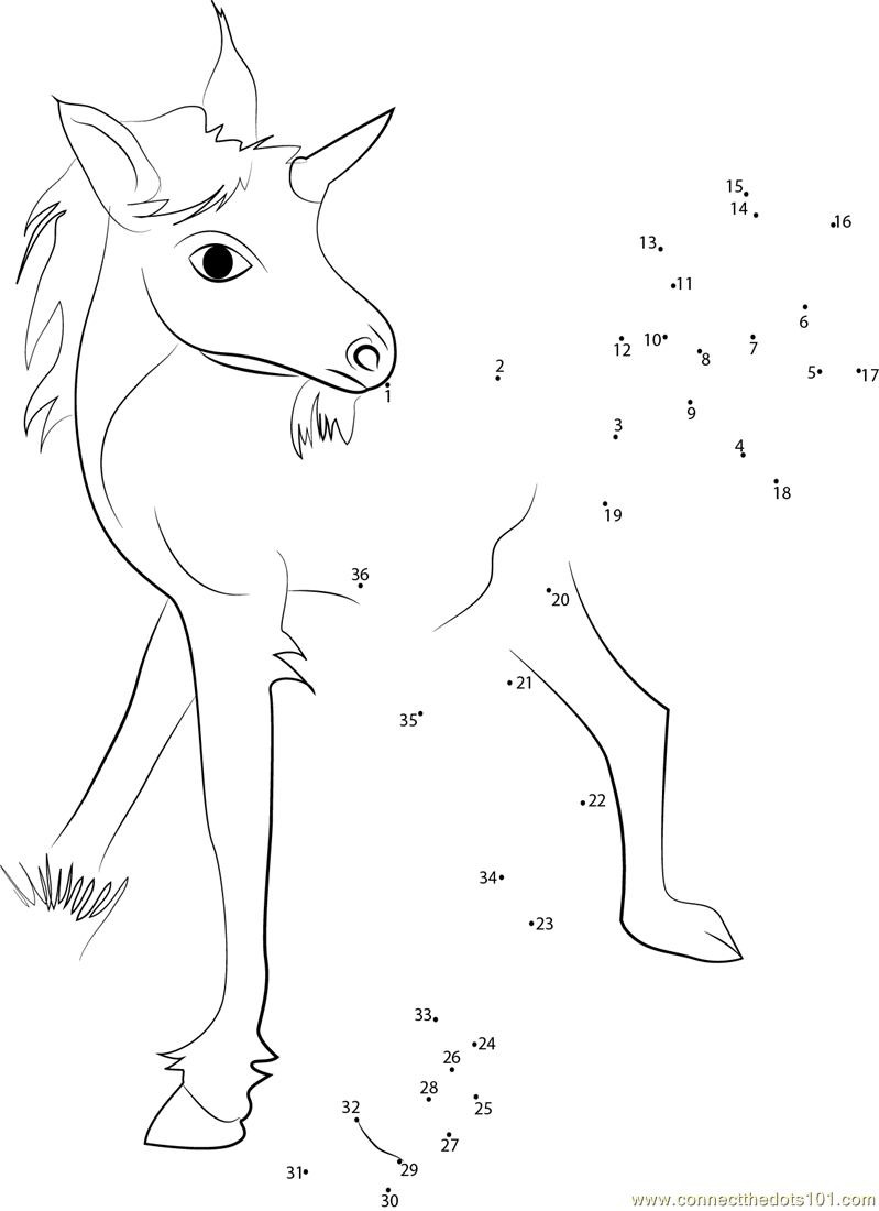 Unicorn Baby Dot To Dot Printable Worksheet Connect The Dots