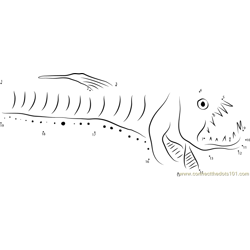 Head of a Pacific Viperfish Dot to Dot Worksheet