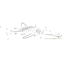 Whale Shark Diver Dot to Dot Worksheet