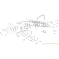 Whale Shark Dot to Dot Worksheet