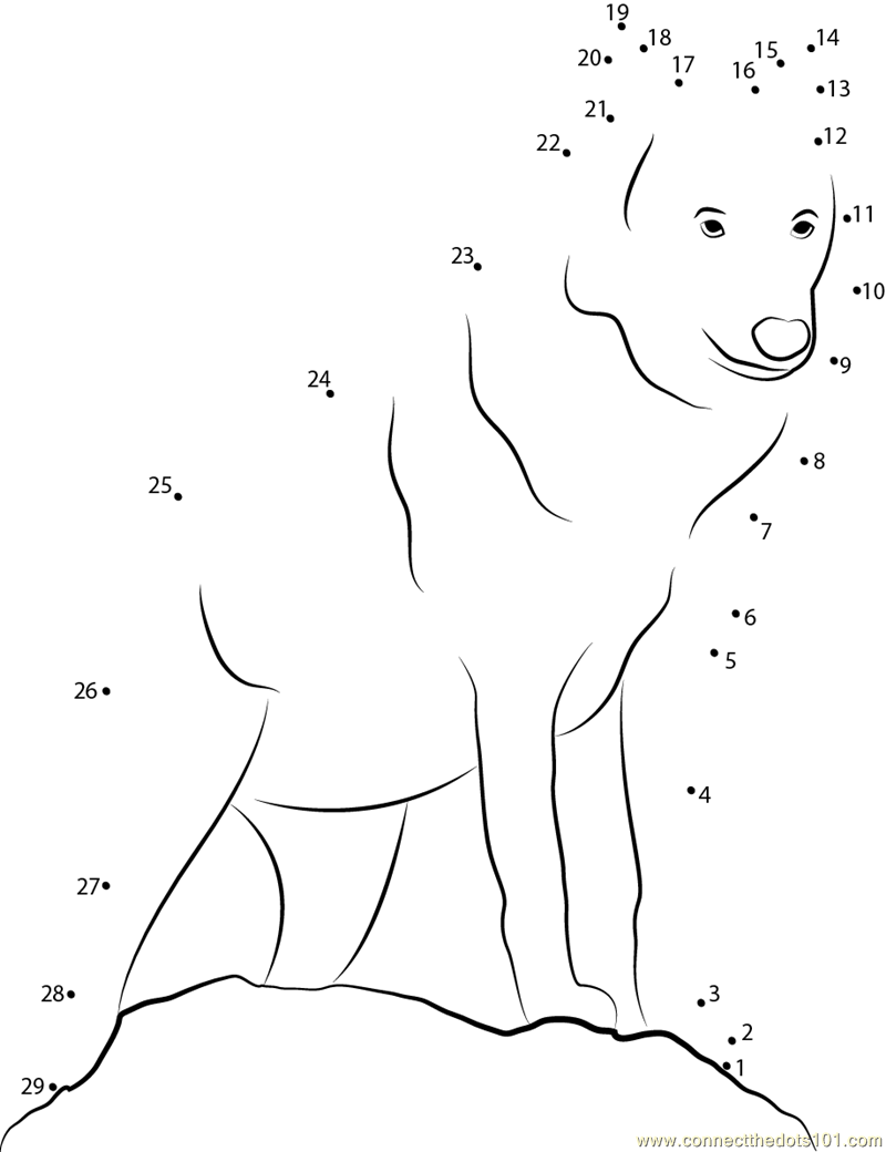 lupus coloring pages - photo#13