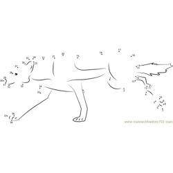 Wolf Female Dot to Dot Worksheet