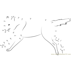 wolf running on the pond Dot to Dot Worksheet