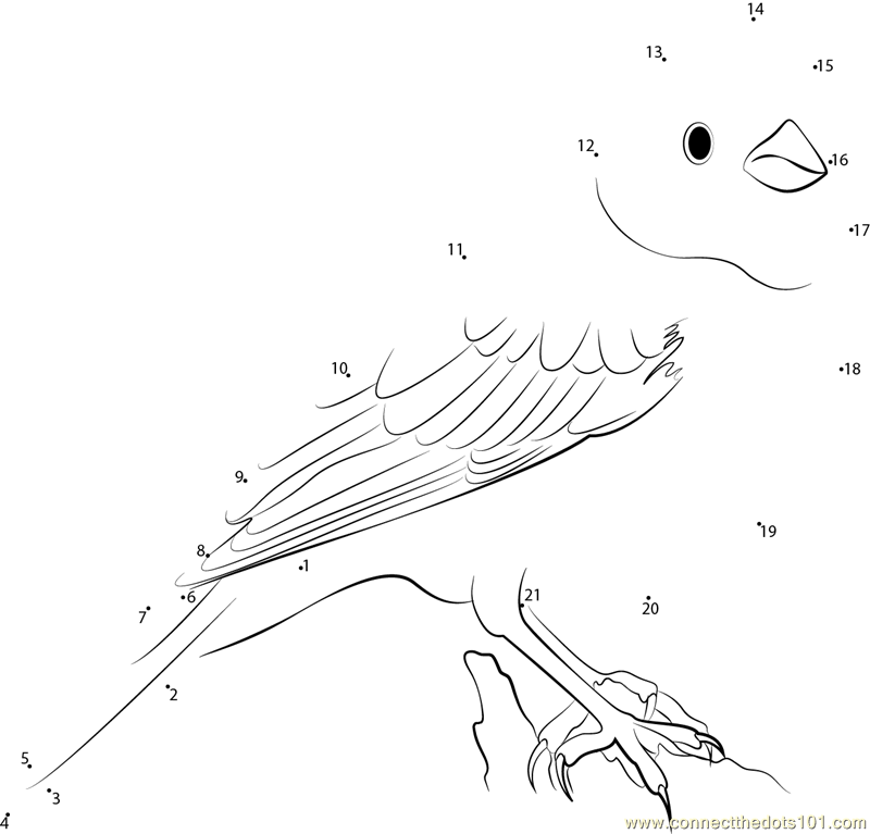 yellowhammer bird coloring pages - photo #46