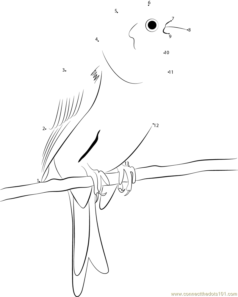 yellowhammer bird coloring pages - photo #49
