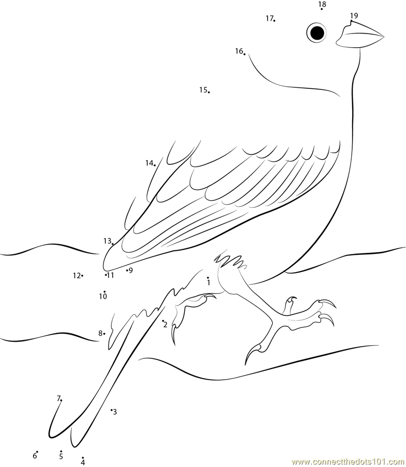 yellowhammer bird coloring pages - photo #37