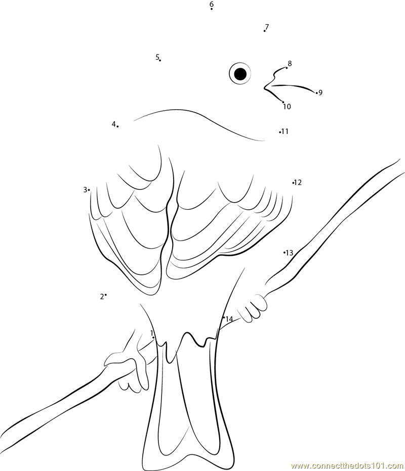 yellowhammer bird coloring pages - photo #19