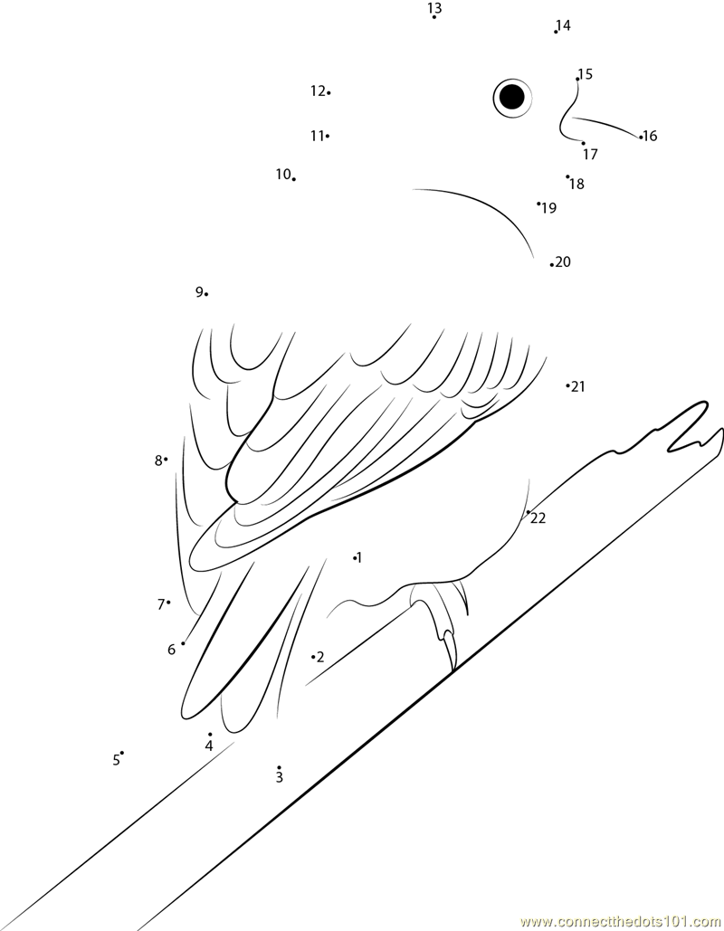 yellowhammer bird coloring pages - photo #21