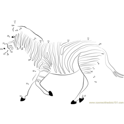 Zebra Run Dot to Dot Worksheet