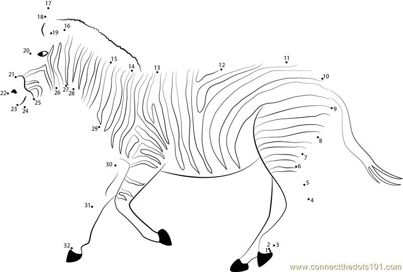 Zebra Run dot to dot printable worksheet - Connect The Dots
