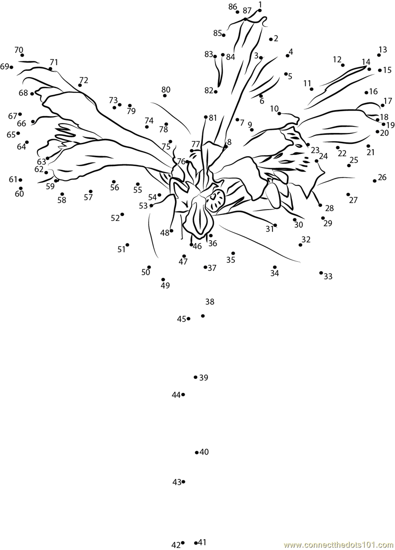 alstroemeria coloring pages - photo#14