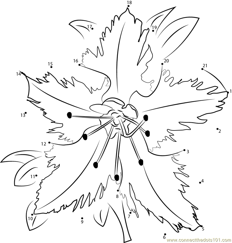coloring pages for rhododendron - photo #27