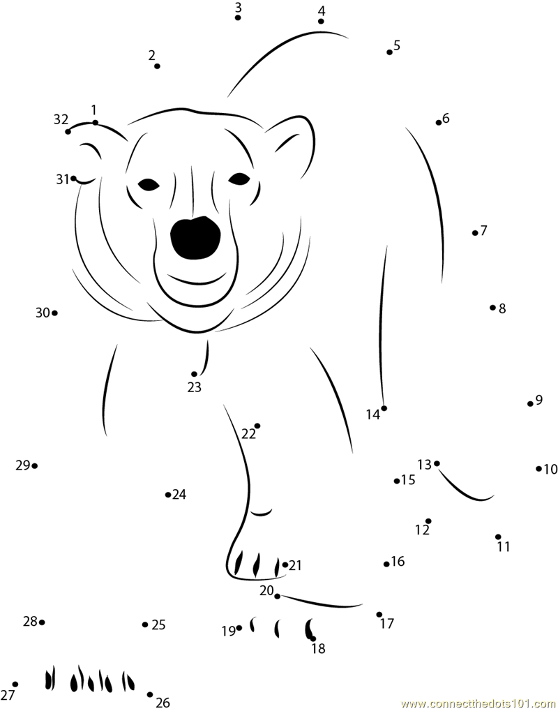 Polar Bear Connect The Dots Worksheet