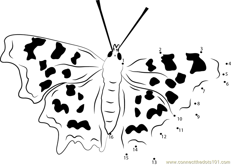 Connect The Dots Endangered Butterflies (Insects