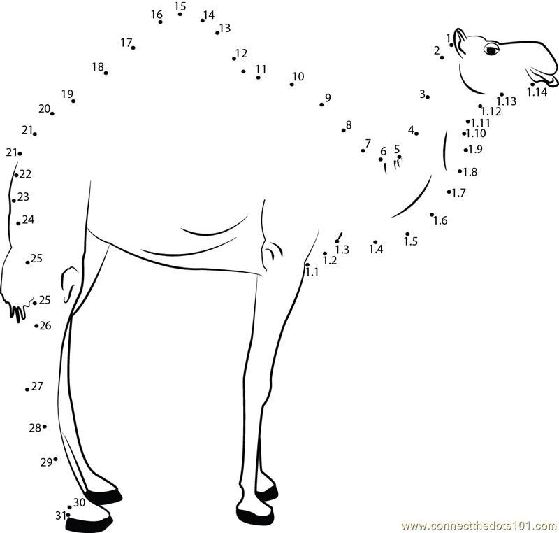 Dot+to+Dot+Camel Camel Side Pose Dot to Dot Printable Worksheet ...