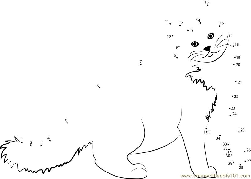 Connect The Dots Black Cat (Animals > Cat)