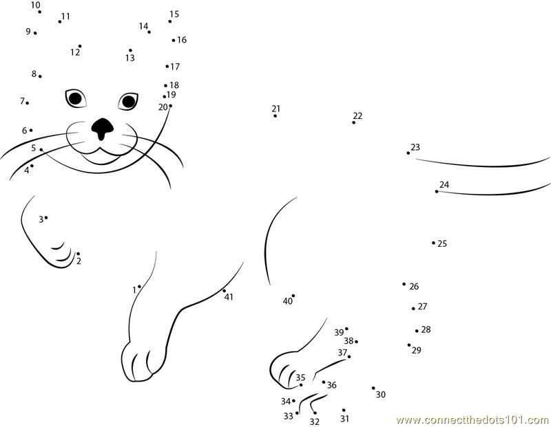 Connect The Dots Orange Cat (Animals > Cat)
