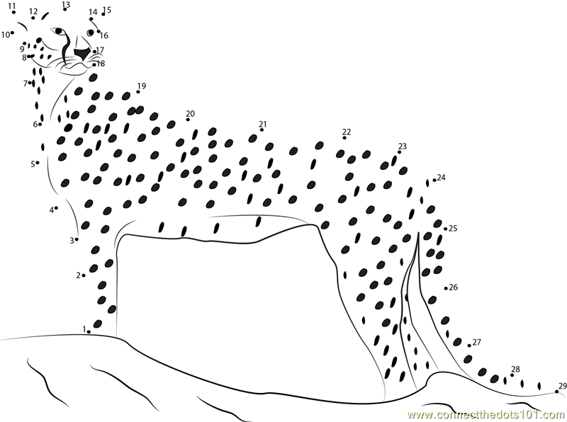 Cheetah Attacks Dot To Dot Printable Worksheet