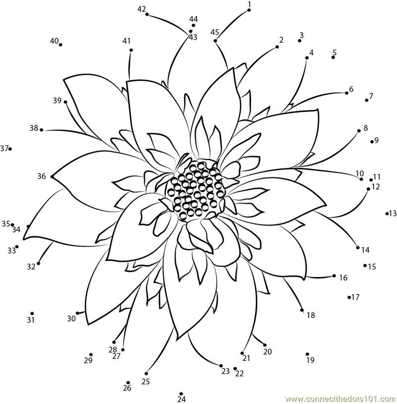 Connect the Dots Dahlia Flower