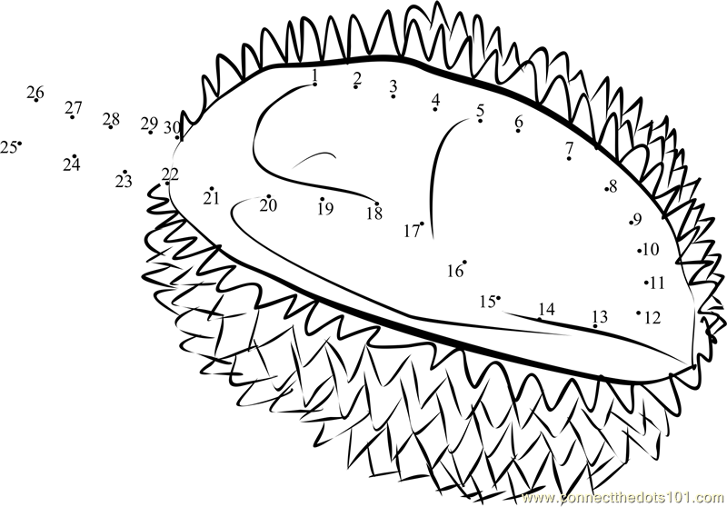 Durian Coloring Page Supercoloring Sketch Coloring Page