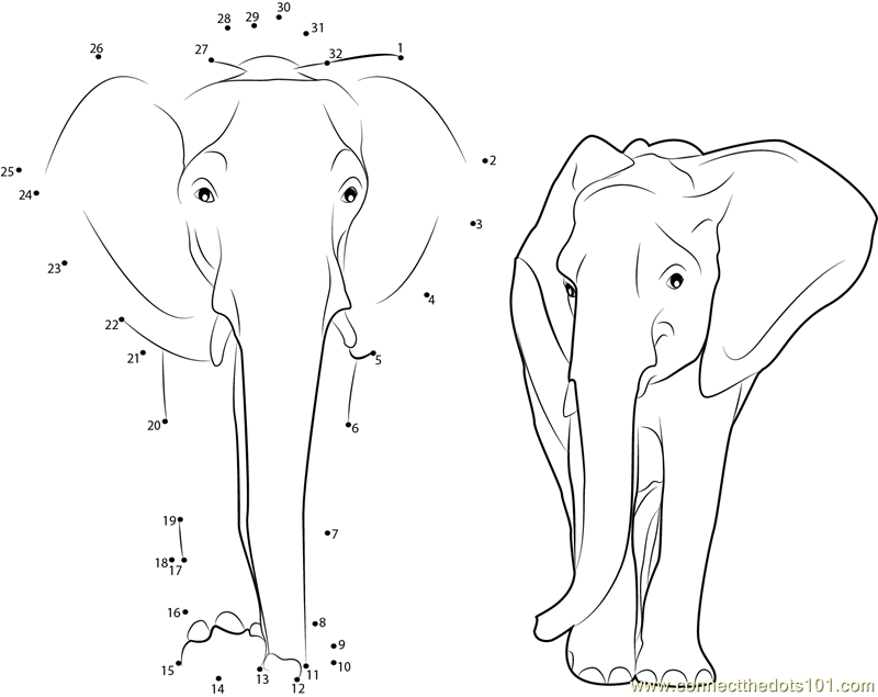 Elephant Dot To Dot Worksheet : Connect the dots asian elephant animals gt dot
