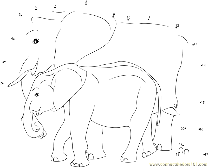 Connect The Dots Baby Asian Elephant Animals Gt Elephant