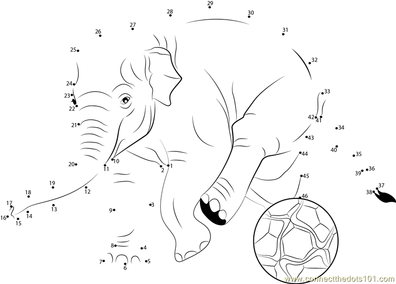 Elephant Dot To Dot Worksheet : Connect the dots elephant soccer animals gt