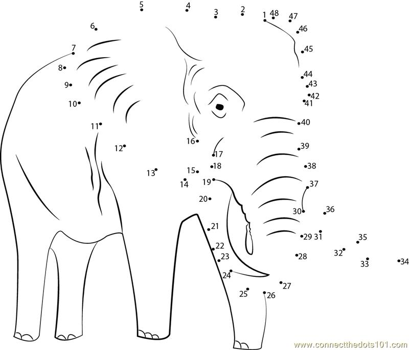 Elephant Dot To Dot Worksheet : Object moved