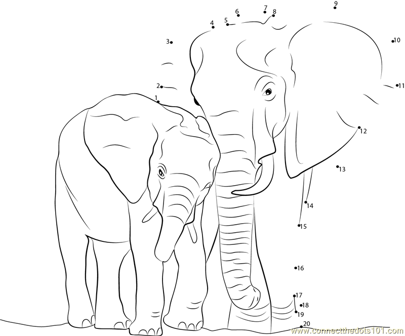 Elephant Dot To Dot Worksheet : Connect the dots elephant with baby animals gt