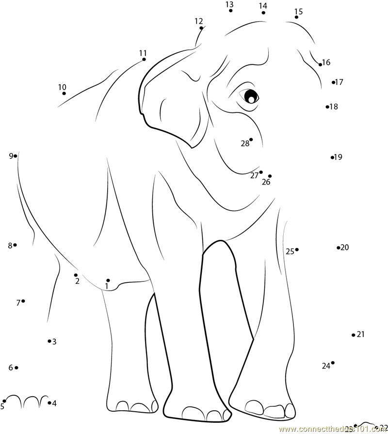 Connect The Dots Male Asian Elephants Animals Gt Elephant