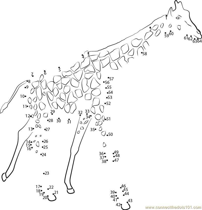 Pics Photos - Animals Dot To Dot Puzzles