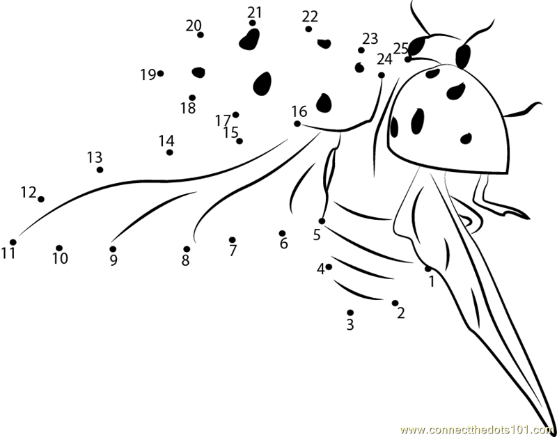 flying ladybugs coloring pages - photo#29