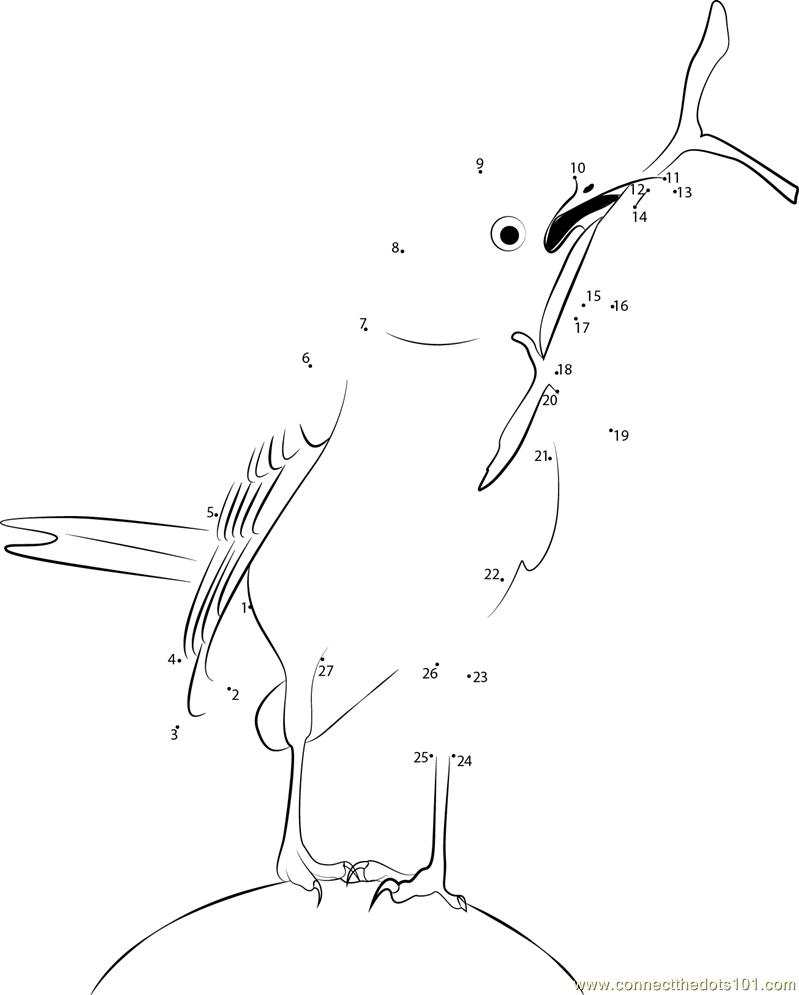 Connect The Dots Animals Birds Detail Birds Gt Mockingbird