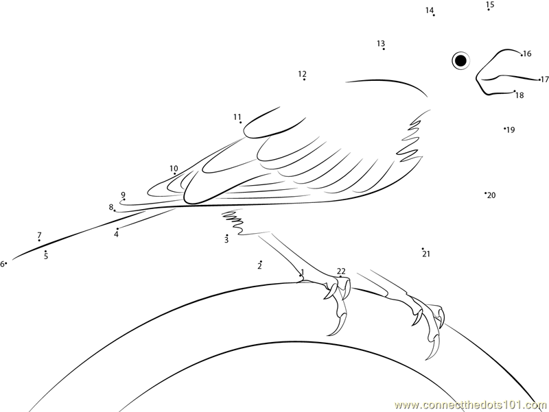 purple finch coloring page - connect the dots relax purple finch birds purple finch