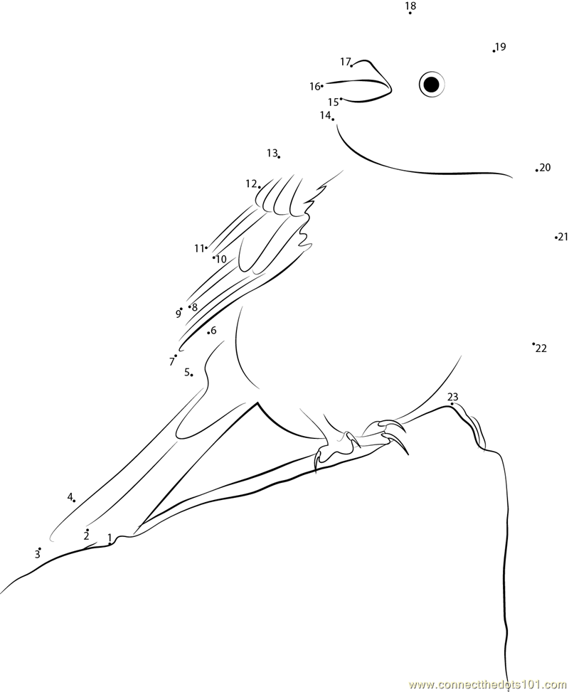 yellowhammer bird coloring pages - photo #34