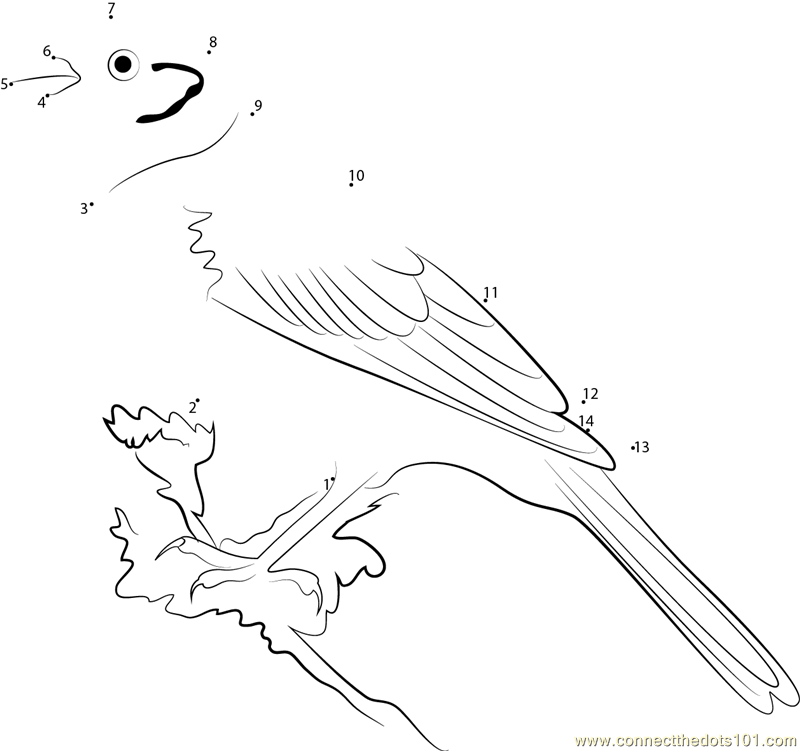 yellowhammer bird coloring pages - photo #20