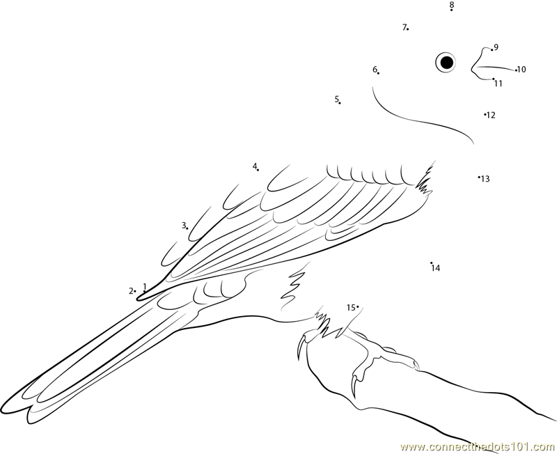 yellowhammer bird coloring pages - photo #35